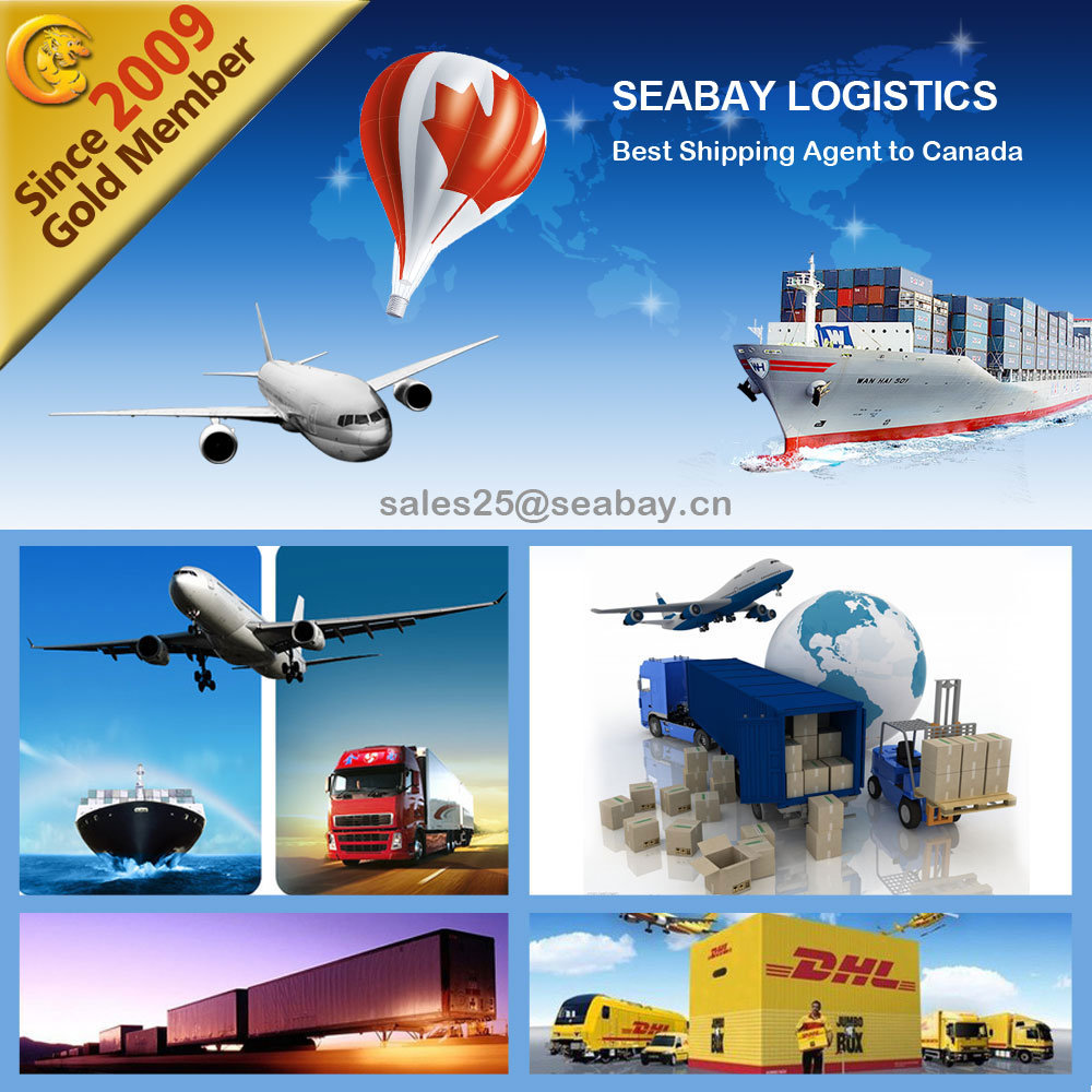 Ningbo Container Shipping Service to Canada