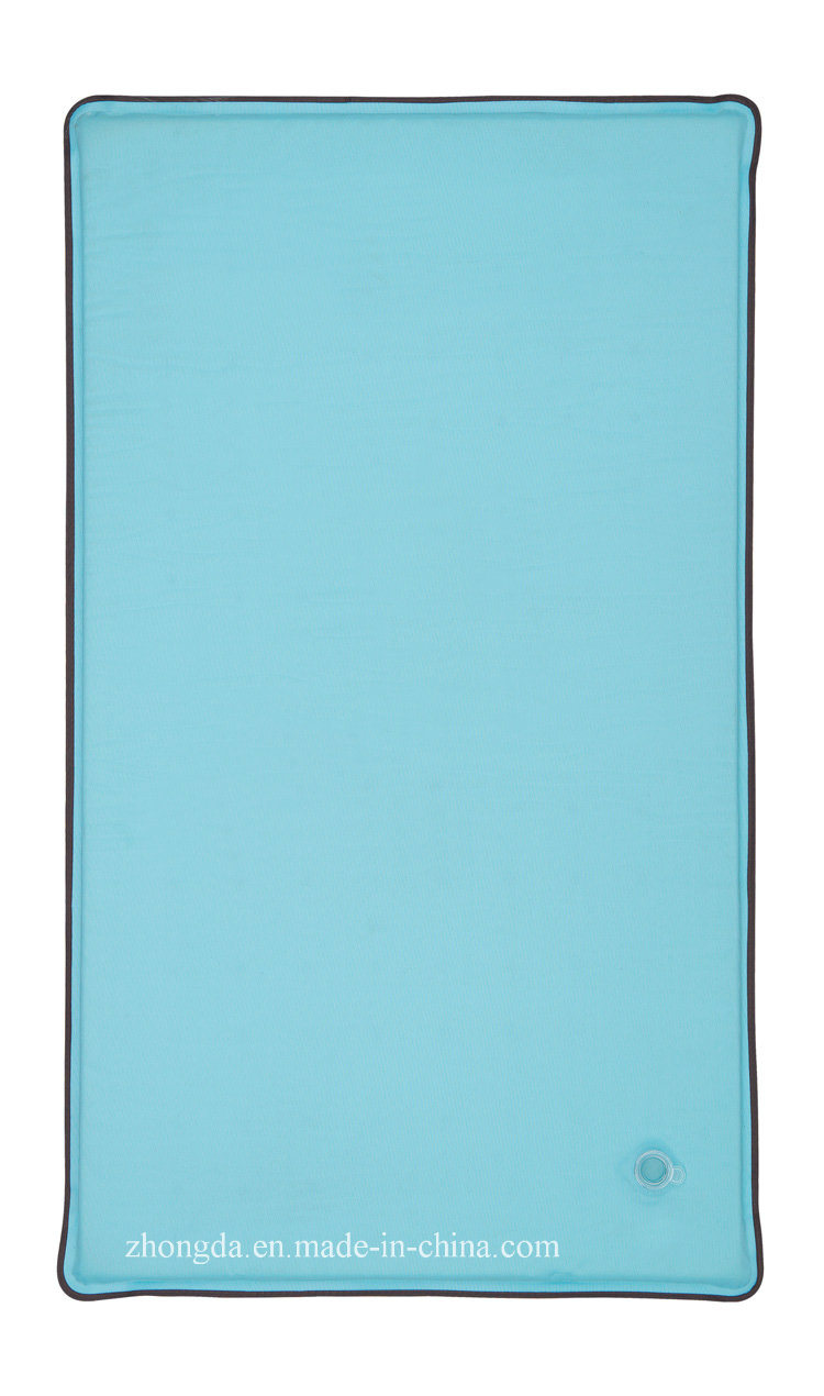 Folding and Self-Inflating Pet Mat for Water Infuse