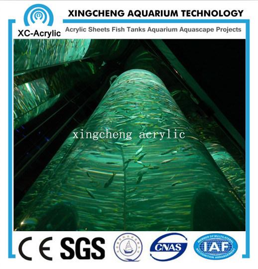 80mm Thick Acrylic Material Aquarium for Aquarium Project