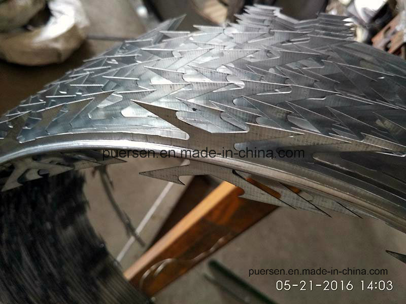 Factory Razor Blade Barbed Wirehot Dipped Galvanized Razor Wire