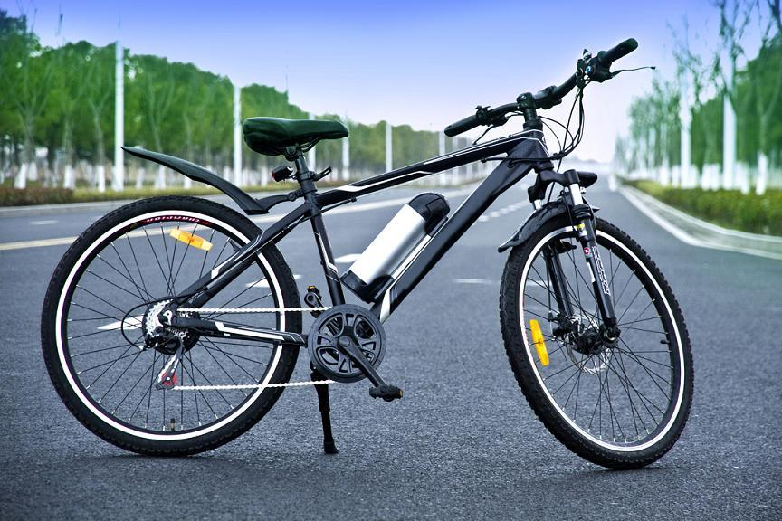 Mountain Electric Bike (TDE1001Z)