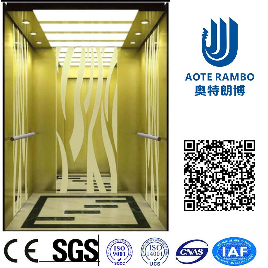 Home Hydraulic Villa Elevator with Italy Gmv System (RLS-241)