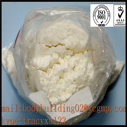 Testosteron Phenylpropionate Muscle Building Steroids CAS 1255-49-8