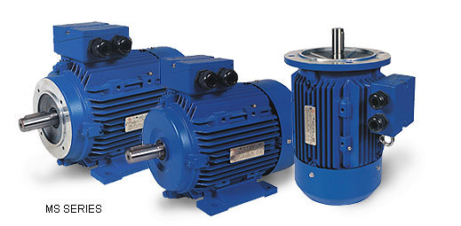 Ms Three Phase Electric Motors