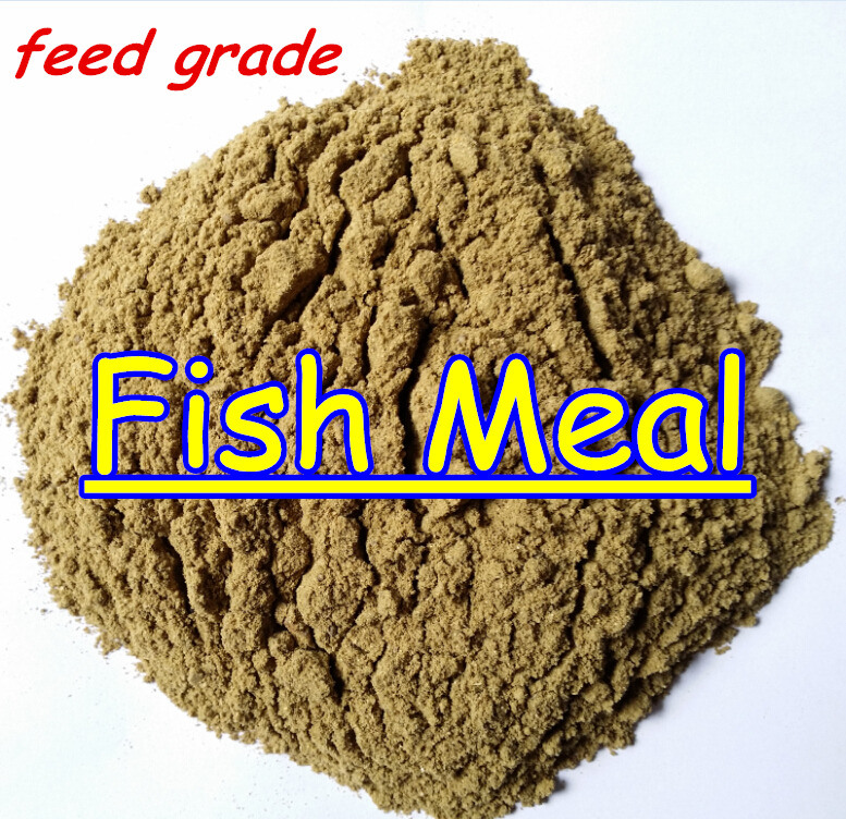 Fish Meal Protein with Lowest Price Protein 65% 62%