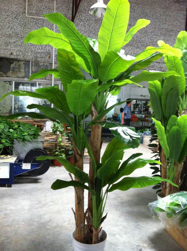 Good Quality Artificial Plants Banana Tree of Gu-Mx498559
