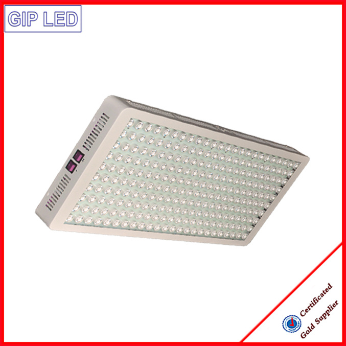 Wholesale 1200W LED Grow Lights for Microgreens