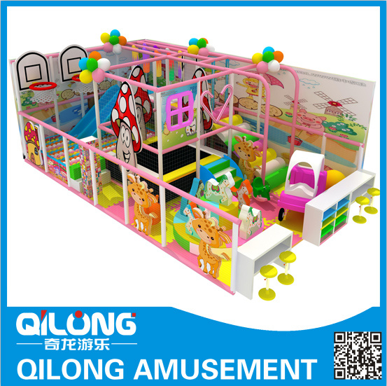 Colorful Design for Indoor Playground Equipment (QL-1126N)