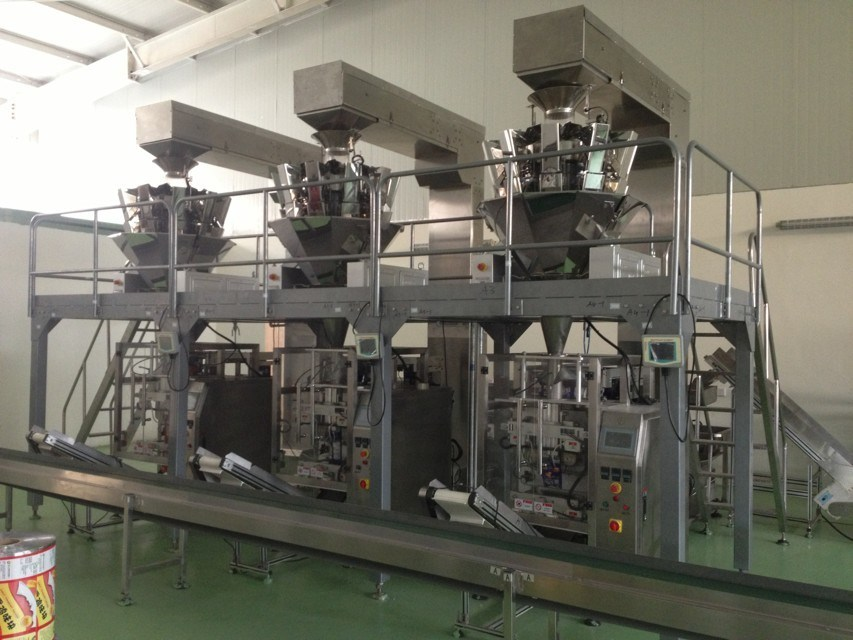 Automatic Premade Pouch Packing Machine