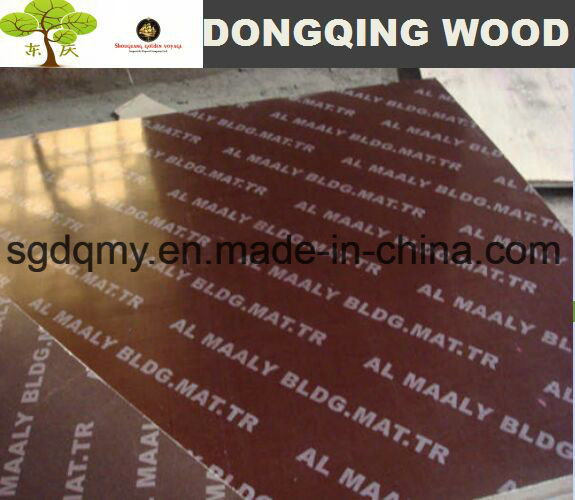 Filmed Plywood 18mm and Plywood Timber Wood for Sale