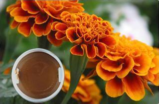 Marigold Oleoresin/Lutein From Sinochem
