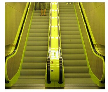 High Quality 800mm Width Escalator