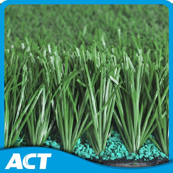 Indoor Soccer Field/Soccer and Football Grass/Artificial Grass Yarn (MD50)