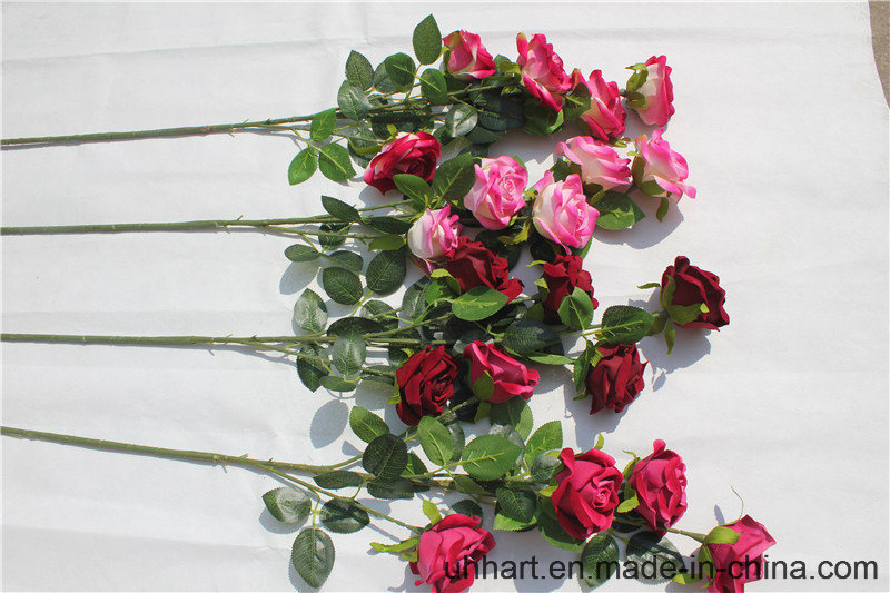 Hot Selling 5heads Round Rose Sticks for Wedding