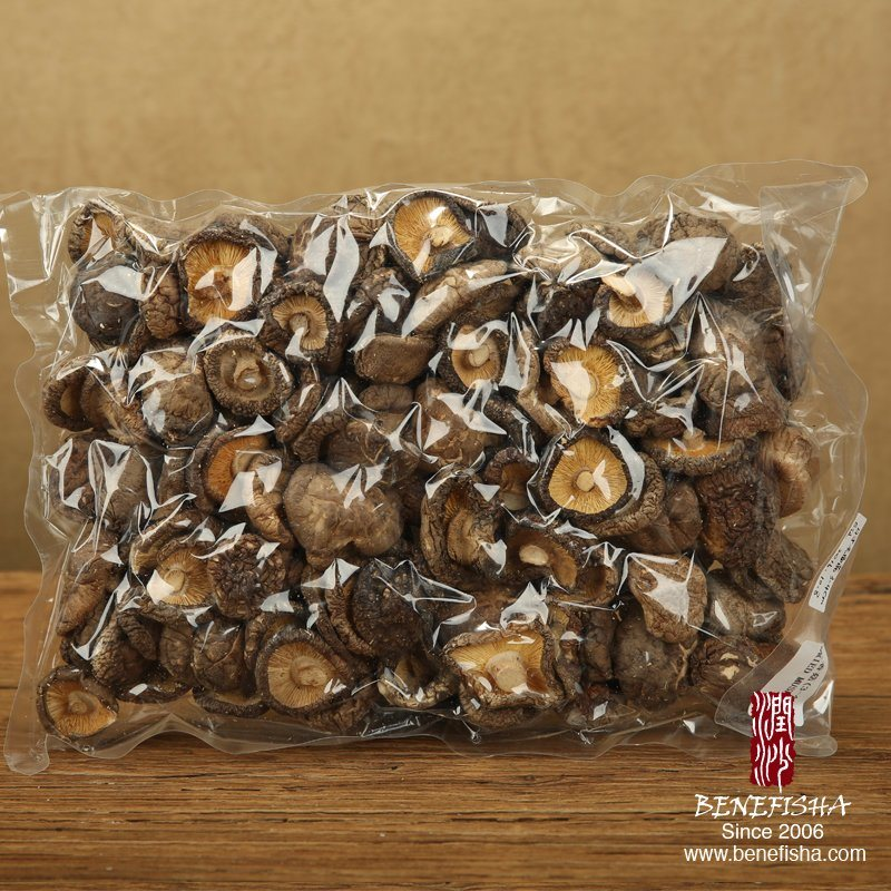 Dried Mushroom (Japanese Glossy Surface)