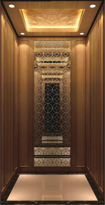 Private Home Elevator for Private Villa