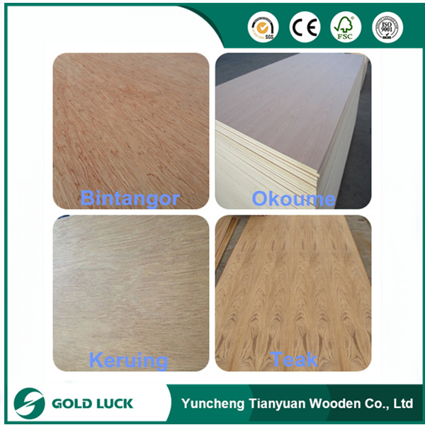 Linyi Commercial Plywood Manufacturer/Pencil Cedar Kuering Bingtangor Birch Okoume Plywood