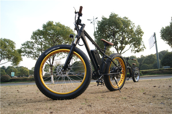 High Speed 48V Fat Tire E-Bike Mountain 1000W Electric Bike