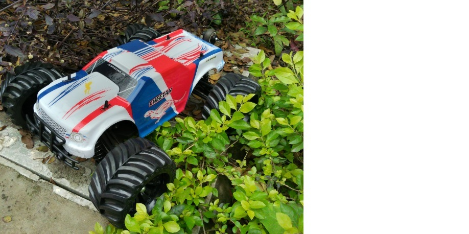 4WD Electric Power Mini Savge 1: 10 Scale Hobby RC Car