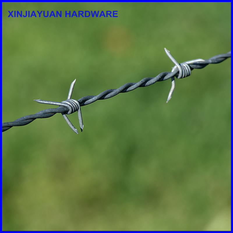 Galvanized Vineyard Barbed Wire Hot Sale