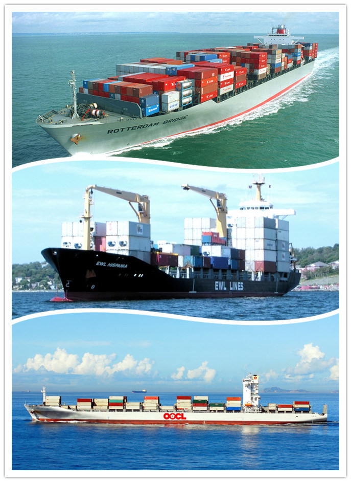 Consolidate Logistics Service / Lowest Sea Freight / One-Stop Sea Freight Service / Best Sea Freight to Worldwide