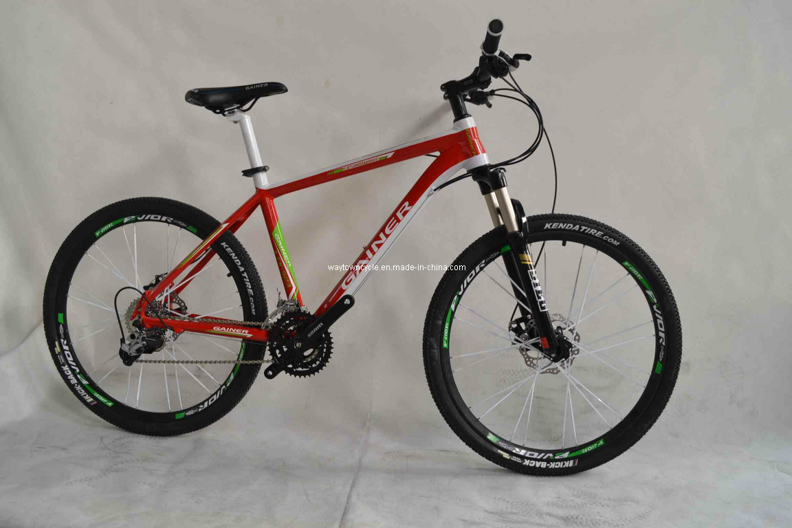 MTB Bike (WT-26402)