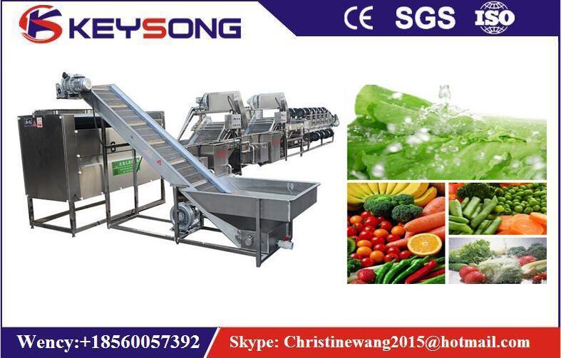 Vegetable Fruit Food Washing Processing Machine