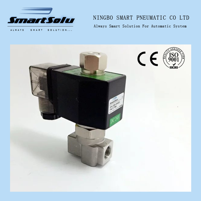 2 Way Ss304 Water High Pressure 12VDC Solenoid Valve
