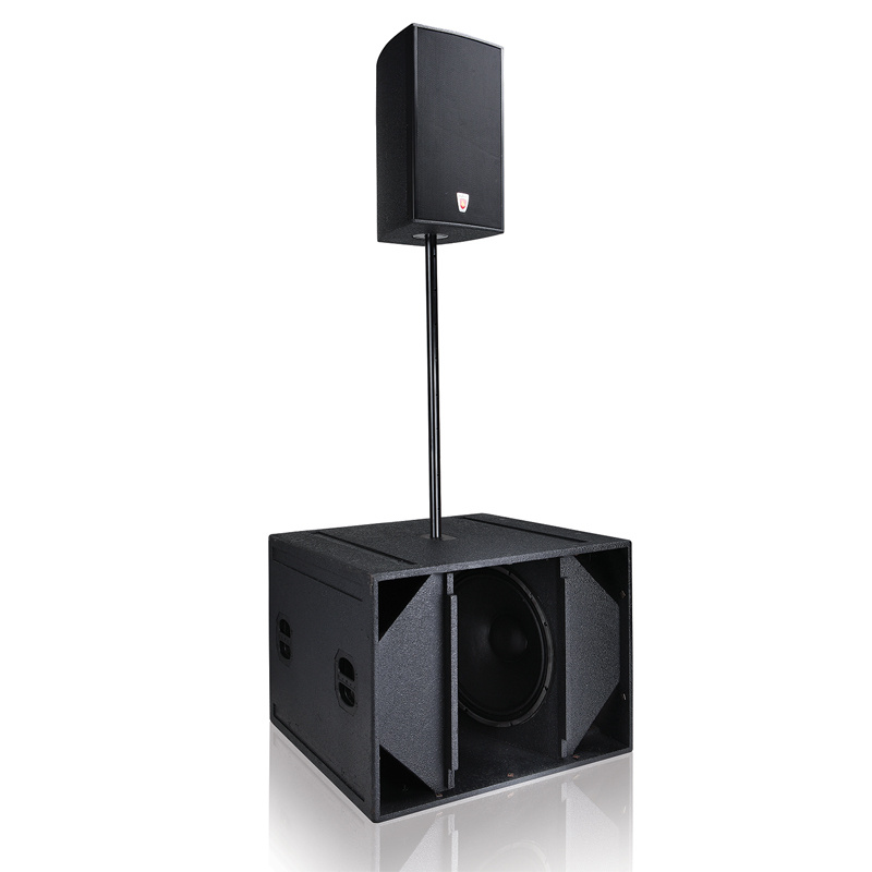 """B218 2X18"""" Professional Audio Loudspeaker"""