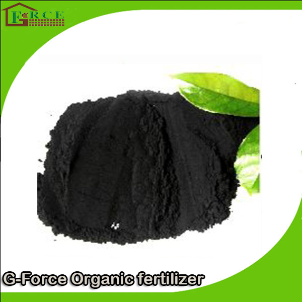 Slow Release and Black Glowing Ball Humic Acid Quality