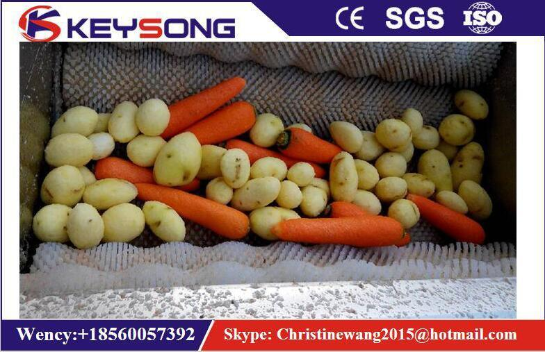 Brush Potato Carrots Washing and Peeling Food Machine