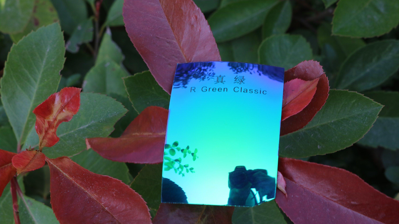 Colorful Eyeglasses Polarized Tac Lens (R Green Classic)