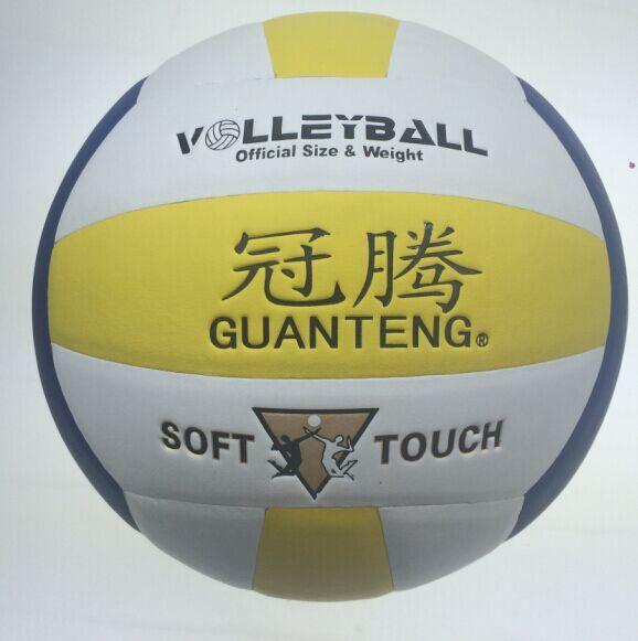 Volleyball, professional Volleyballs
