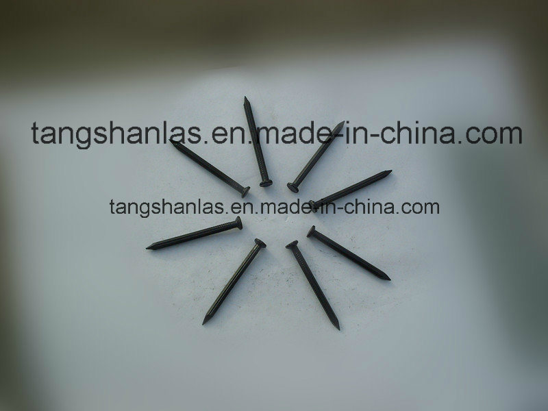 Black Concrete Nails with Half-Round Head