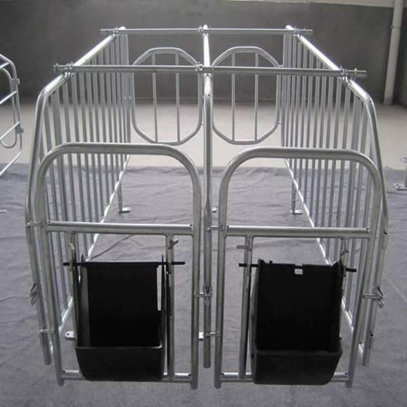 Galvanized Steel Enclosure for Pig Breeding