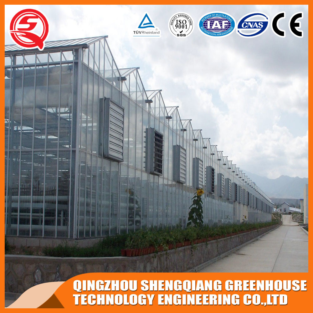 Agriculture Glass Greenhouses for Vegetable/Flower/Garden
