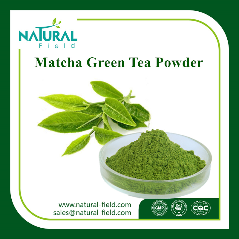 Food Supplement Matcha Tea Powder