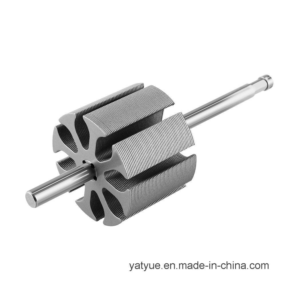 Micro Motor Parts Rotor 25X96L