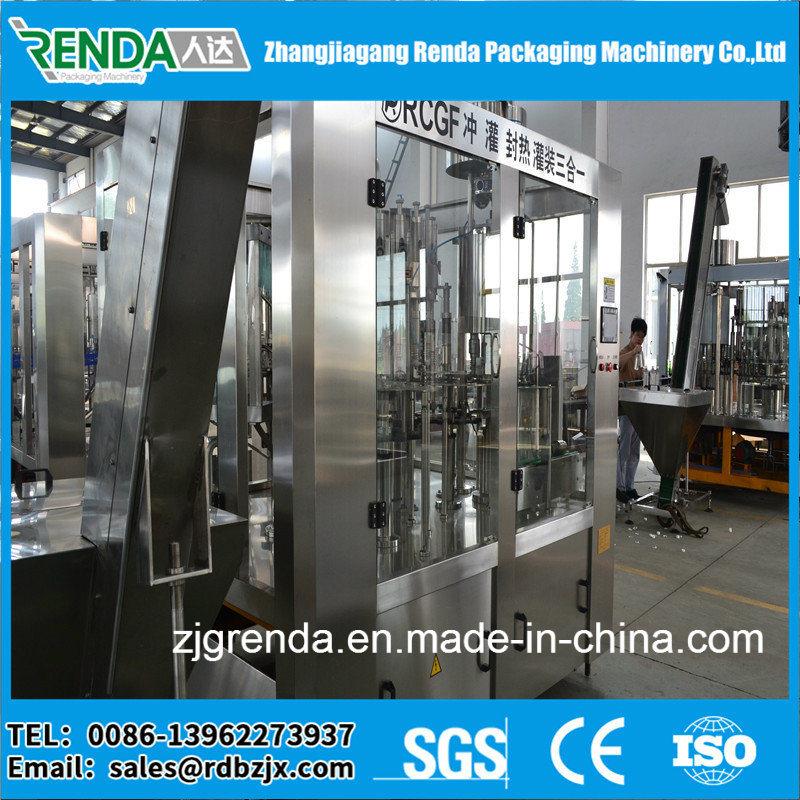 Pet Bottle Fruit Juice Packing Machine/Production Line