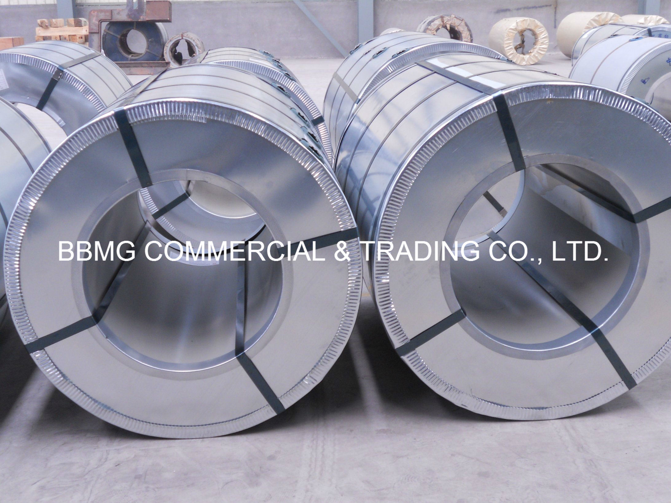 Factory Best Price PPGI/Prepainted Steel Coil Made in China