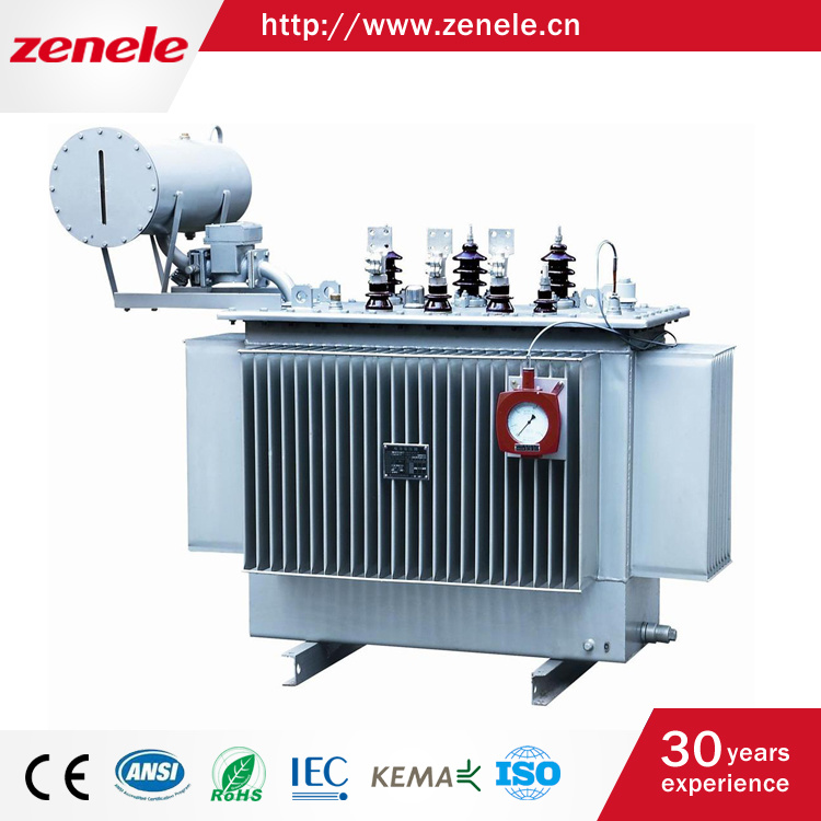 IEC60076 Standard 3 Phase Oil Type Distribution Transformer, 800kVA 11kv