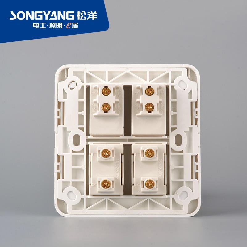 2gang+2socket Socket Switch for House