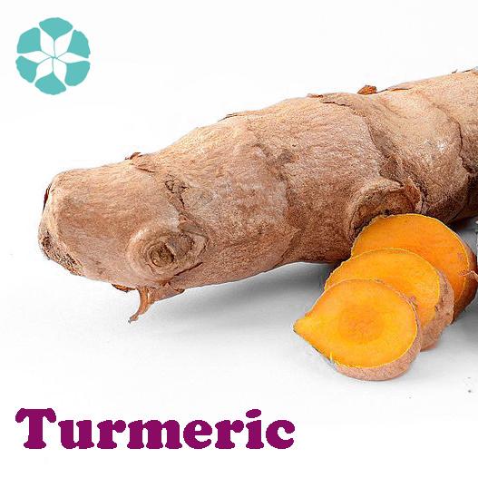 Turmeric Extract / Curcuma Longa Extract / Curcumin