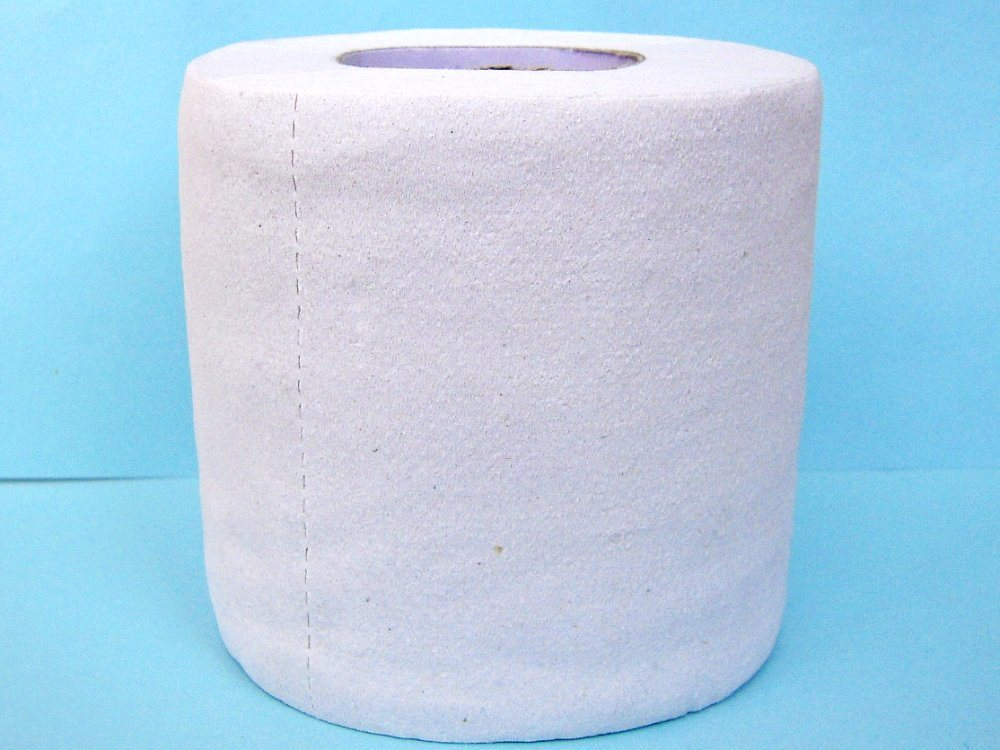 China recycled toilet roll china recycled toilet paper for Recycling toilet paper tubes