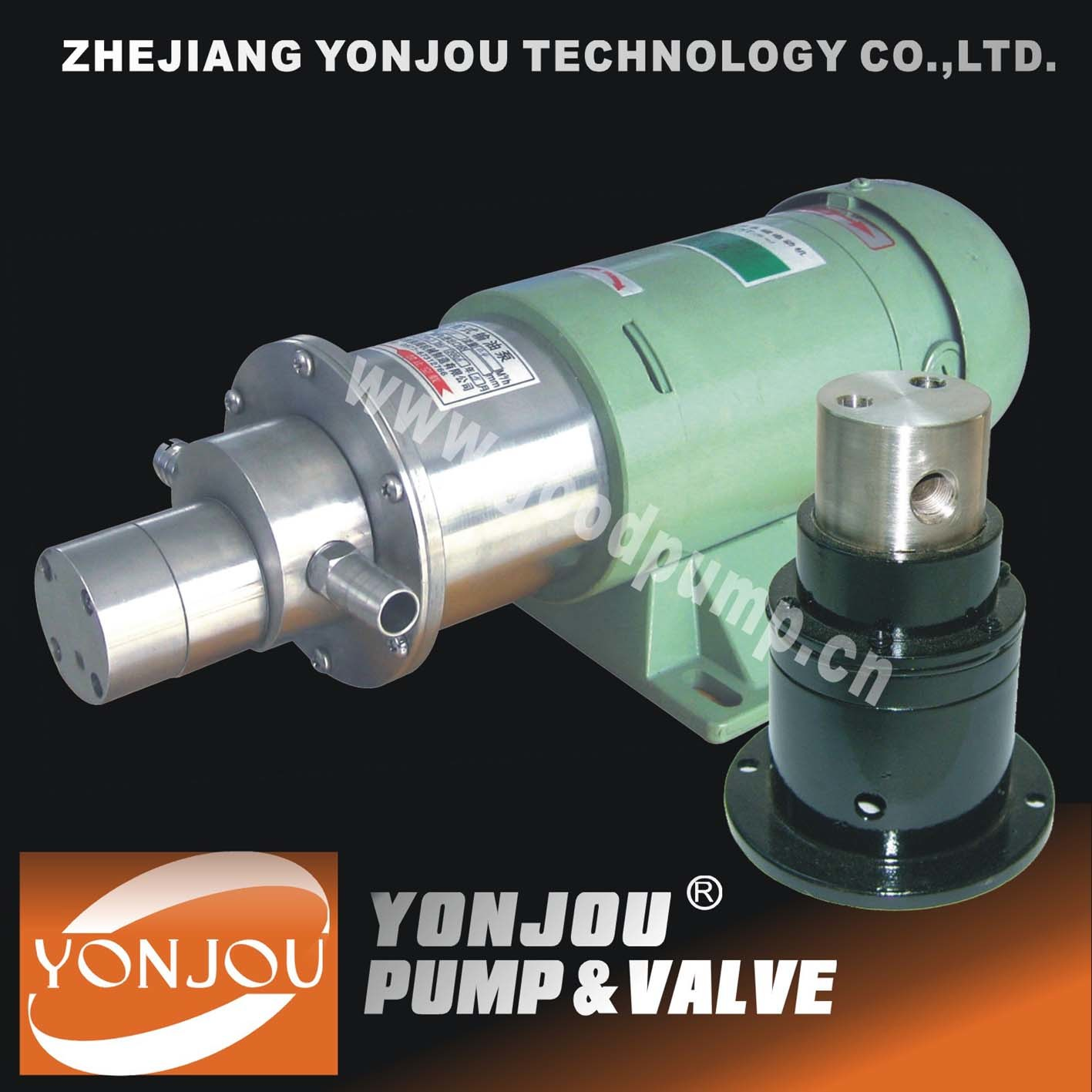 Magnetic Drive Pump of Ss304 Ss316 (CQCB)