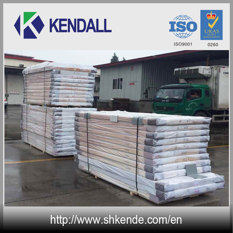 Fireproof PU Sandwich Panel for Cold Storage Room