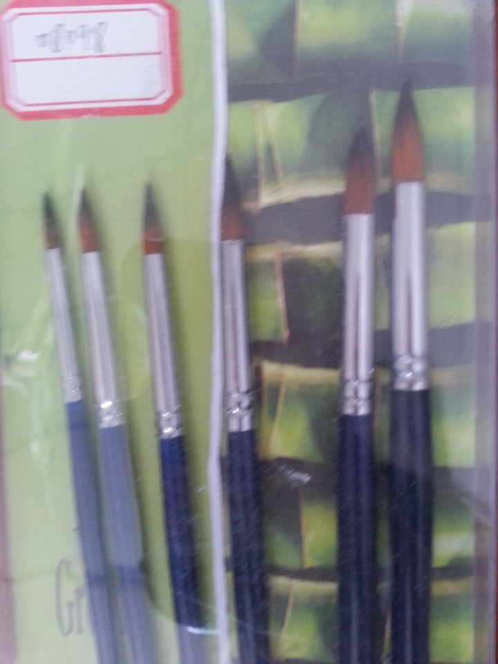 Artist Paint Brush for Acrylic, Oil, Watercolors (SF-08098)