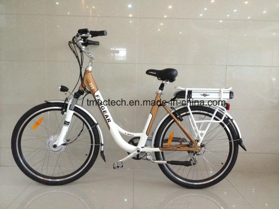 Fast Sale 250watt 36V 10 Ah EU Market Electric Bicycle