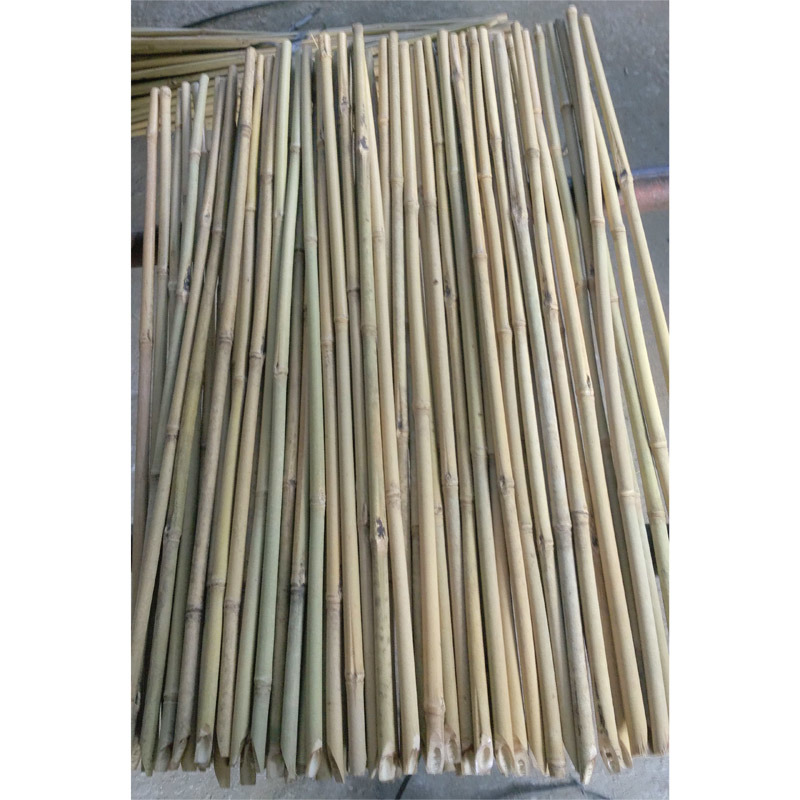 Dry Rolled Natural Bamboo Fencing