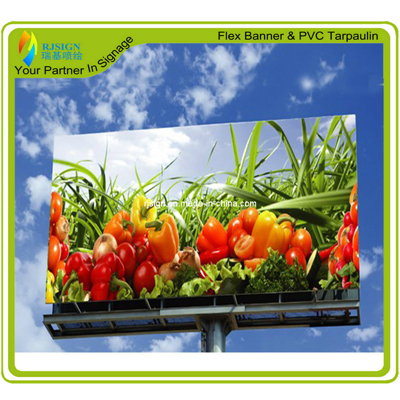Factory Price Coated Frontlit Flex Banner (RJCF003)